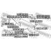 Camber Correction Screw SUBARU 901700154